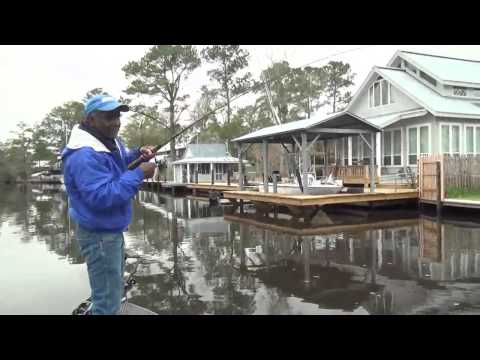 Video: Warm Spell Inspires Bayou Lacombe Panfish To Feed