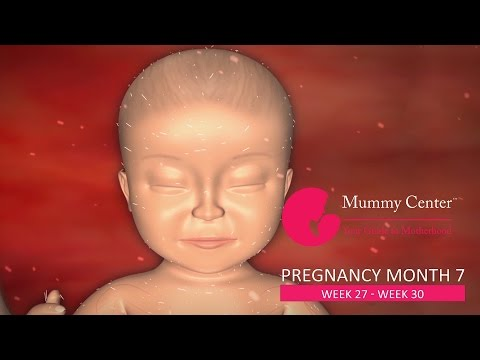 7th Month of Pregnancy – Definitive Guide For Pregnancy Month 7 | Week (27,28,29,30) | Mummy Center