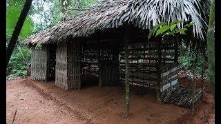 Primitive Technology: Panoramic primitive hut | Daily work (primitive-life)