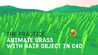 Create a Grassy Field Animation with Hair Object Dynamics in Cinema 4d // The Practice 108 thumbnail
