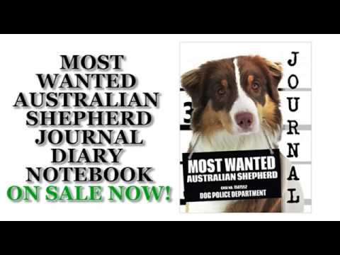 Most Wanted Australian Shepherd Journal Diary Notebook 2 (Dog Journal Notebook Diaries)
