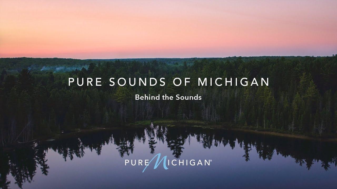 Pure Sounds   Pure Michigan   Michigan