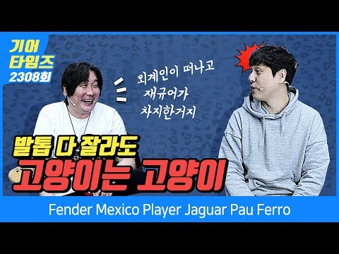 펜더 Fender Mexico Player Jaguar Pau Ferro