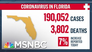 'Shattered The Previous Record': Florida Records More Than 11,000 Coronavirus Cases In One Day