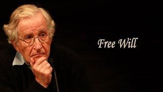 Noam Chomsky - Free Will II