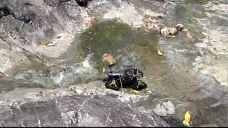 Custom RC Mattracks Car - wet rock area