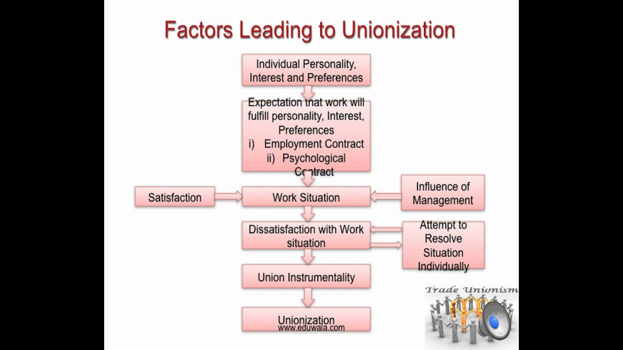 Industrial Relations and Social Dialogue