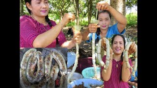 Awesome Pretty Gril Cooking pig intestines  Recipe New   Village Food Factory