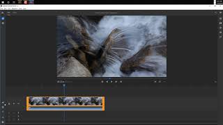 LESSON 2 GET FAMILIAR WITH RUSH INTERFACE IN ADOBE RUSH