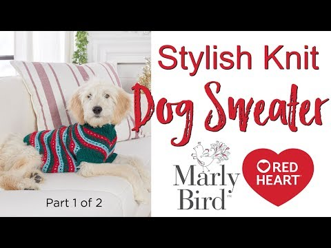 DIY Stylish Knit Dog Sweater for Extra Small, Small, Medium and Large Dogs Part 1 of 2