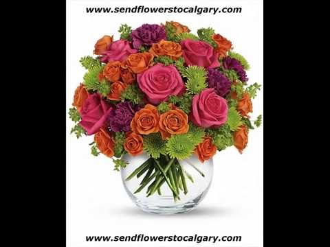 Canada Safeway Florists Edmonton