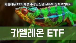 [유료 강의 안내]  미국 ETF 투자 특강: 카멜레온…