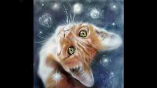 Кошки Пола Найта