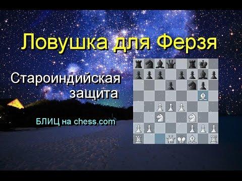 шахматные видео