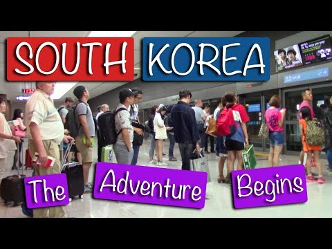 South Korea: The Adventure Begins | Random Snips