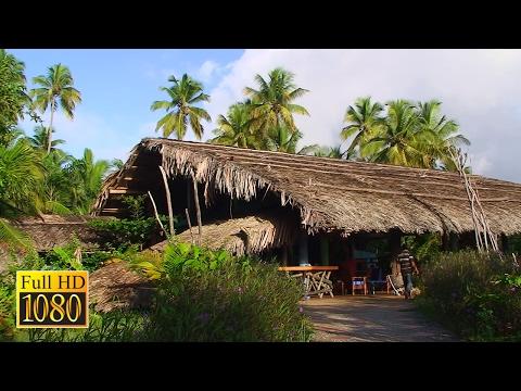 Venezuela Urlaub Teil 1 - Isla Margarita - Nationalpark Orinoco-Delta (Doku Full HD)