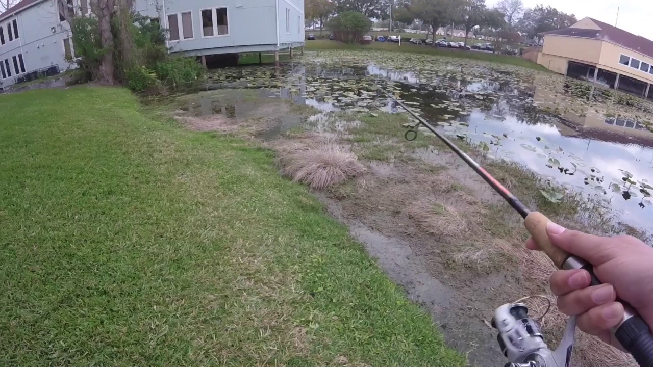 Lily pad bass fishing and bed fishing for bass mix youtube for Bed fishing for bass