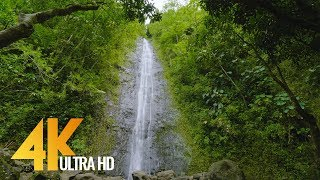 Gorgeous waterfalls from oahu island, hawaii in exceptional 4k ultra hd 60 frames quality for your tv, lobby, waiting room, relax spa, yoga studio, ...