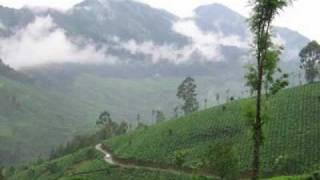 Devan Thantha