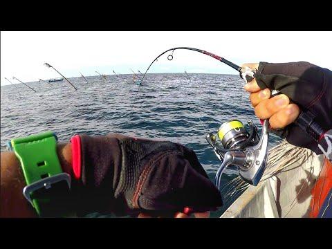 Micro Jigging TALANG Tuas Khairul -- Micro Jigging for Queenfish ( Ultralight Fishing )