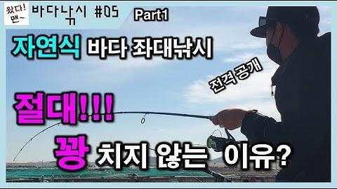 [바다낚시] 삼길포 대호좌대 자연식바다좌대낚시 절때 꽝치지 않는 이유? 전격공개!!