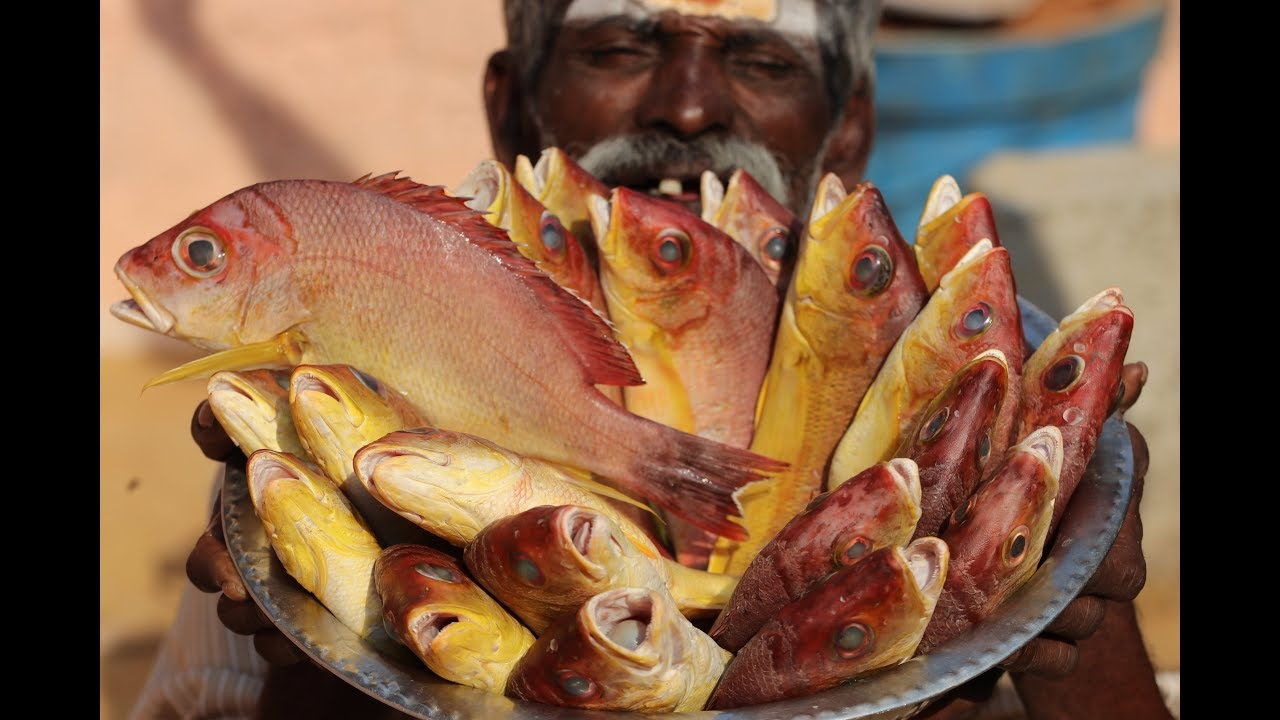 Yellow PARROT FISH Prepared my Daddy / Village food factory