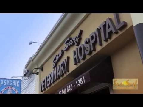 Sun Surf Veterinary Hospital - Huntington Beach, CA