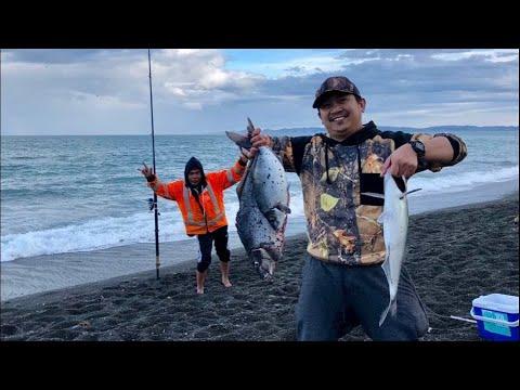 Nz Pinoy Surfcasting || Blue Moki || Hawke's Bay