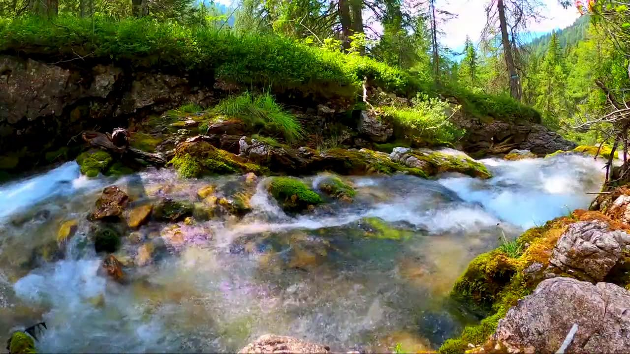 Calming Bright Forest River. Relaxing Nature Sounds. (10 hours). White noise for sleeping