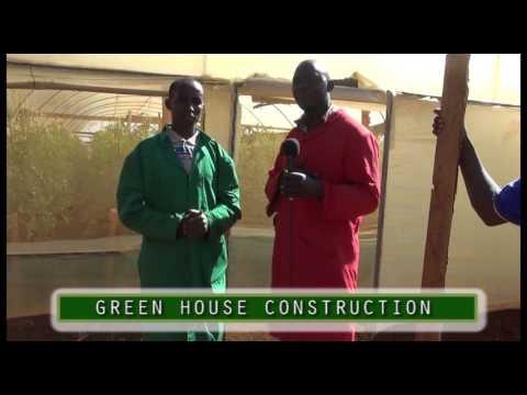 GREEN HOUSE CONSTRUCTION - Farmers Check KTS Tv Kenya