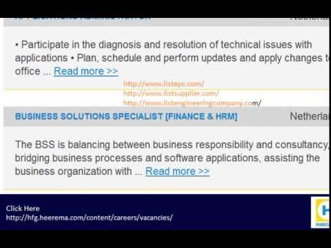 hfg.heerema job career vacancy