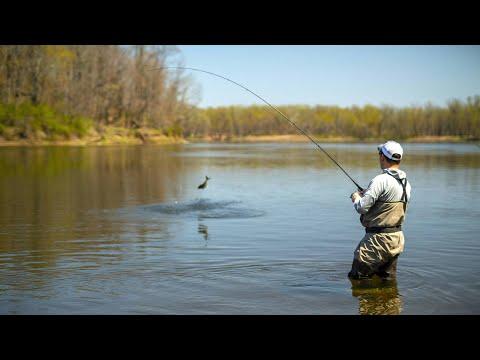 Delaware Water Gap Shad | S16 E1