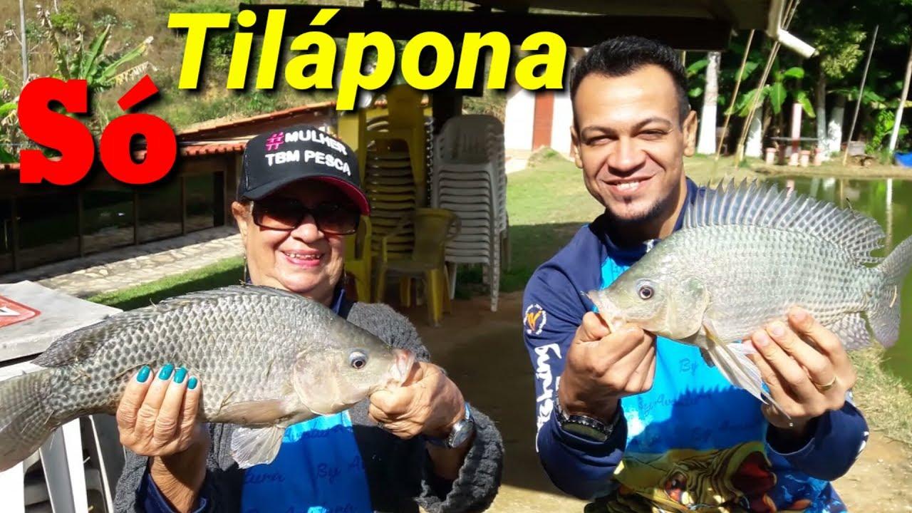 ca979b3d55fb2 Dicas para pescar Tilápia - DICA DE PESCA DE TILÁPIA no FRIO - Massa  INCRÍVEL