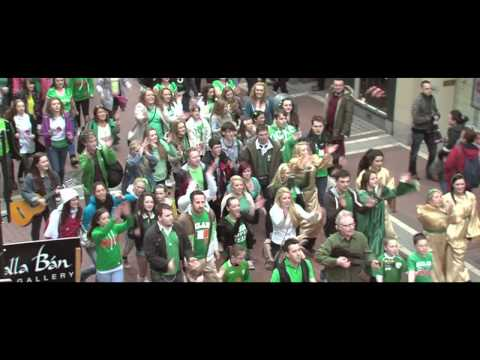 Euro 2012 song for Ireland. 'Bring It On!' The Subztitutes Official Video