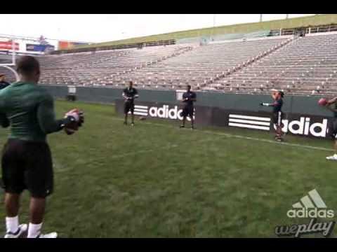 Lito Sheppard: Catching Balls