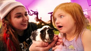 MY PET HOUSE TOUR!! Meet Honey my new guinea pig & learn how to take care of her! (Animal Routine)