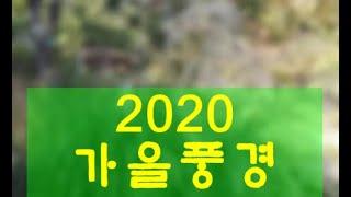[깨달음TV]2020 가을풍경