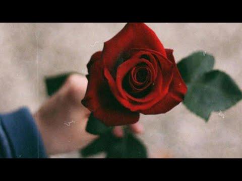 ŞEİR UCUN FON MUSIQI ✅ - Melodiya Piano ( SUPER FON MUSIQI ) Haminin axtardigi super fon musiqi