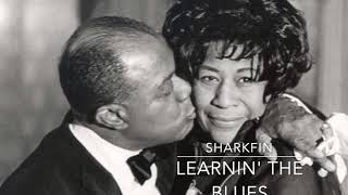 Learnin' The Blues - Jazz/Blues-Hop Style Beat - SharkFin
