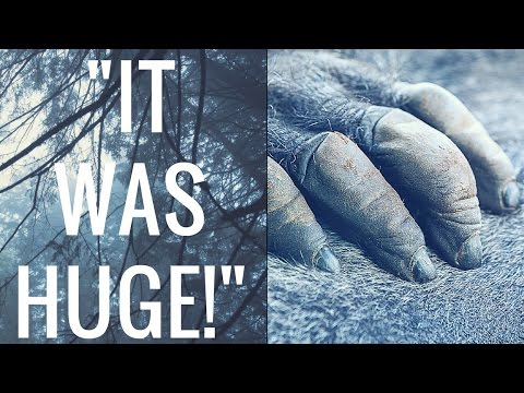 The Man That Killed A Bigfoot! (The Full True Encounter!)
