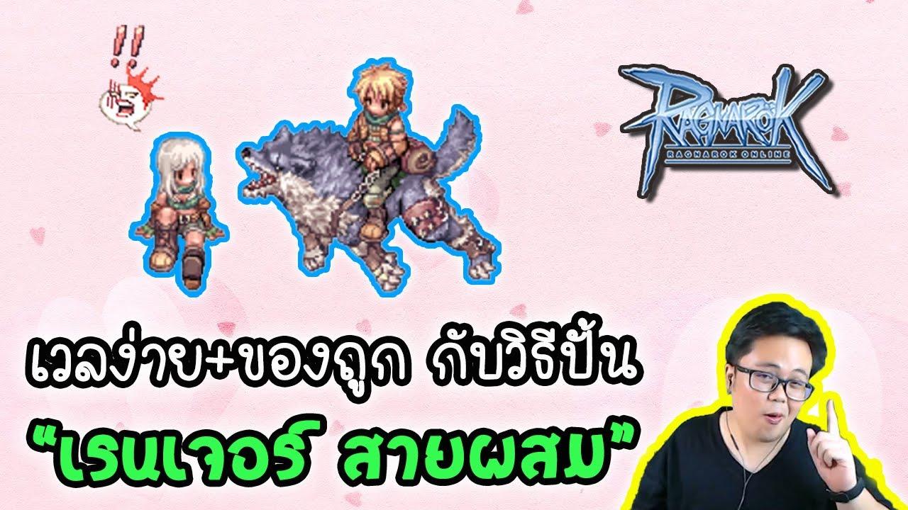 Guide จาก 0 สู่ Ranger สาย ผสม หาเงินดี ต้นทุนต่ำ! | Ragnarok Online Gravity