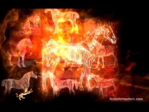 Kasachstan: Pferde / Kazakhstan: Horses - Reisevideo / travel video powered by Reisefernsehen.com