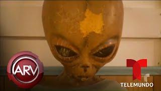 Millones de personas invaden el Área 51 buscando OVNIS | Al Rojo Vivo | Telemundo
