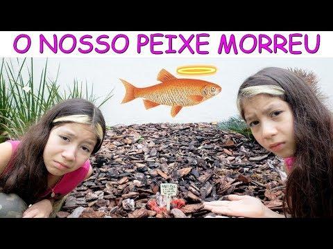 Download O NOSSO PEIXE MORREU