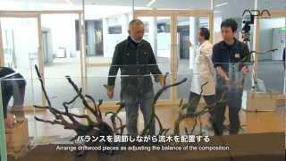 [ada View]新潟薬科大学 2m40cm水槽レイアウト制作(english Sub)