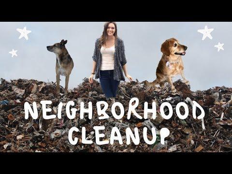 Picking Up Trash While Dog-Walking