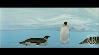 March of the Penguins - Original Theatrical Trailer