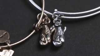 Side by Side (Otters) Set of Two for JDRF | ALEX AND ANI