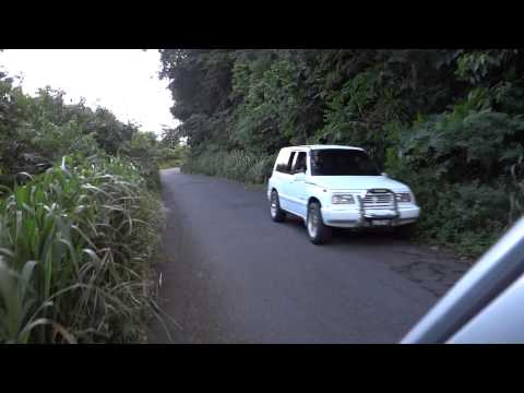 Dominica: Driving through the lush jungles of Dominca towards the capital Roseau