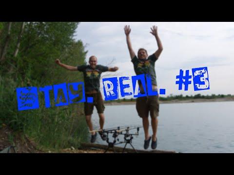 Stay. Real. #3 | Jetzt geht`s ab | Karpfenangeln Grafenwörth